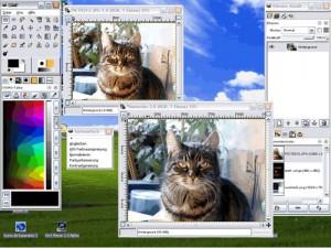 โปรแกรมตกแต่งภาพ GIMP