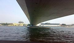 ดิ่งสะพานพระราม 8