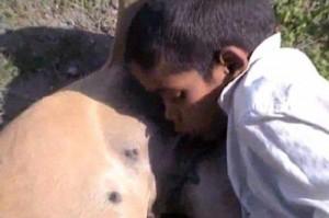 เด็กอินเดียดื่มนมหมา
